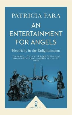 An Entertainment for Angels (Icon Science): Electricity in the Enlightenment - Patricia Fara
