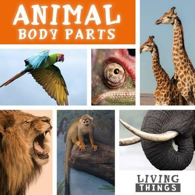 Animal Body Parts - Steffi Cavell-Clarke