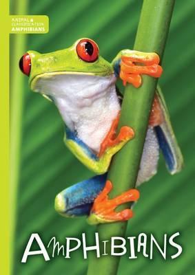 Amphibians - Charlie Ogden