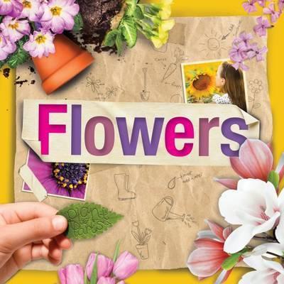 Flowers - Steffi Cavell-Clarke