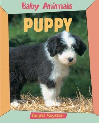 BABY ANIMALS PUPPY - Angela Royston