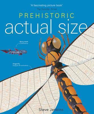 Prehistoric Actual Size - Steve Jenkins