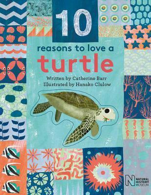 10 Reasons to Love a... Turtle - Catherine Barr