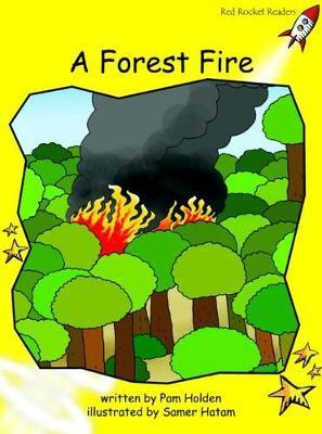 A Forest Fire - Pam Holden