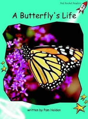 A Butterfly's Life - Pam Holden