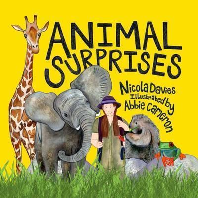 Animal Surprises - Nicola Davies