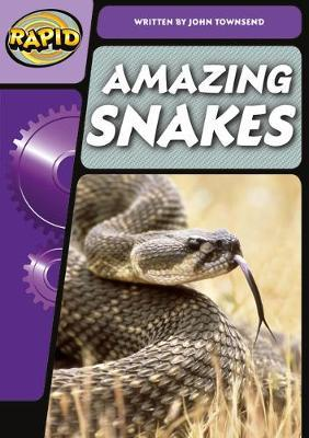 Amazing Snakes: Step 3.2 Phase 5 - John Townsend