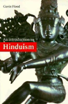 Introduction to Religion: An Introduction to Hinduism - Gavin D. Flood