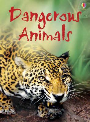 Dangerous Animals - Rebecca Gilpin