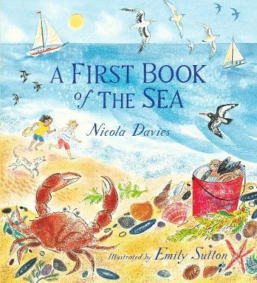A First Book of the Sea - Nicola Davies