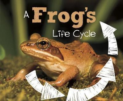 A Frog's Life Cycle - Mary R. Dunn