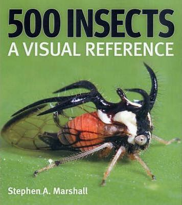 500 Insects: A Visual Reference - Stephen A. Marshall