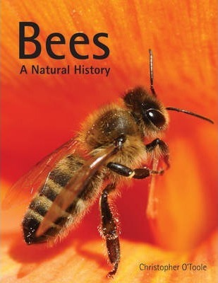 Bees: A Natural History - Christopher O'Toole