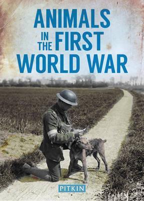 Animals in the First World War - Peter Street