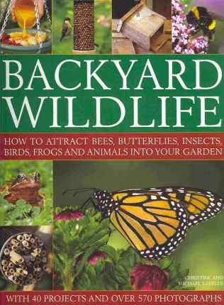 Backyard Wildlife - Christine Lavelle