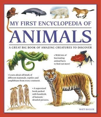My First Encyclopedia of Animals (giant Size) - Matt Bugler