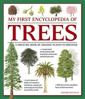 My First Encyclopedia of Trees (giant Size) - Richard McGinlay