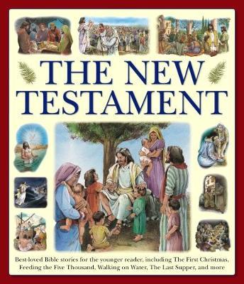 New Testament (giant Size) - Armadillo Books