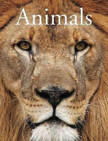 Animals - David Alderton - 9781782747703