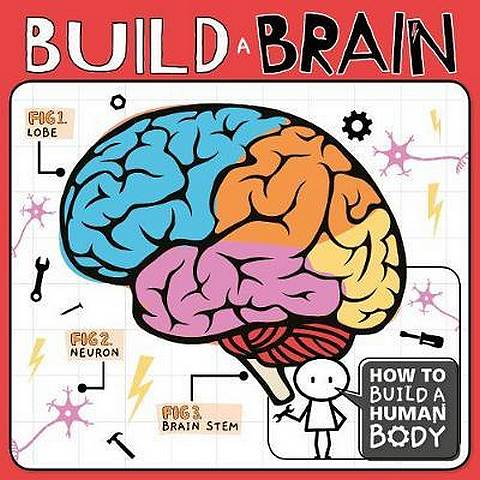 Build a Brain - Kirsty Holmes - 9781786377937