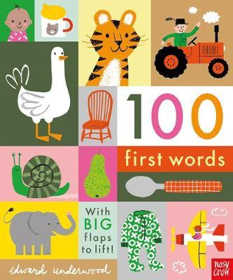 100 First Words - Edward Underwood - 9781788004893