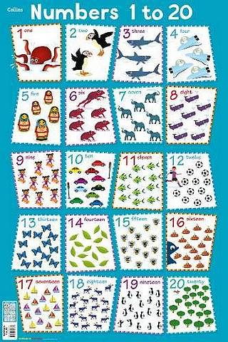 Collins Children's Poster: Numbers 1 - 20 - Steve Evans - 9780008304737