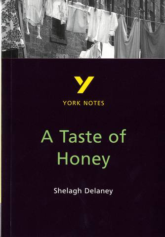A Taste of Honey: York Notes - Bernadette Dyer - 9780582382299