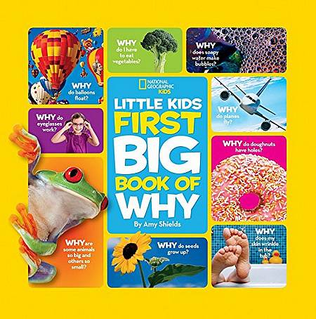 Little Kids First Big Book of Why (First Big Book) - Amy Shields - 9781426307935