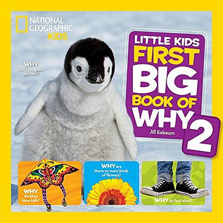 Little Kids First Big Book of Why 2 (First Big Book) - National Geographic Kids - 9781426329999