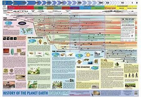 History of Planet Earth - Schofield & Sims - 9780721711621
