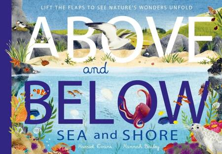 Above and Below: Sea and Shore: Lift the flaps to see nature's wonders unfold - Harriet Evans - 9781838911782