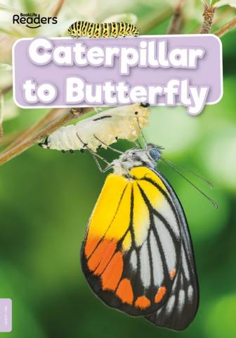 BookLife Non Fiction Readers Level 00 Lilac: Caterpillar to Butterfly - William Anthony - 9781839278938